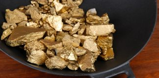 gold nuggets in pan