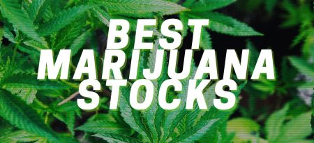These Are The 8 Best Marijuana Stocks To Buy For Green Profits!