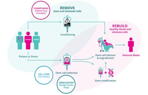 Magenta Therapeutics technology