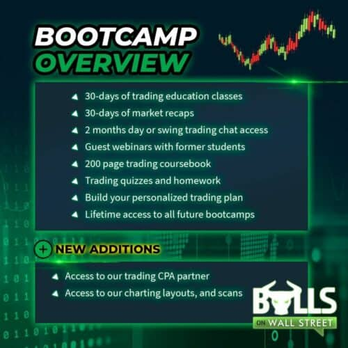 Bulls On Wall Street review: Bootcamp