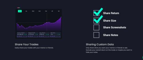 Tradersyn share information
