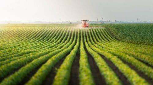 Farmland investing